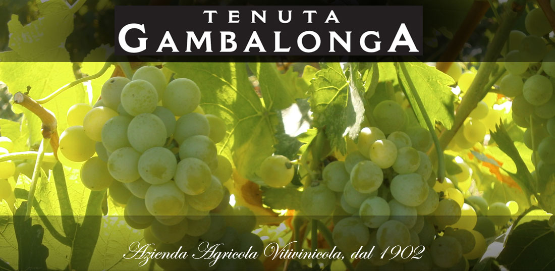 Gambalonga Wines